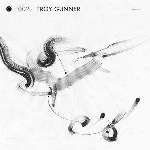 TROY GUNNER - Headlights
