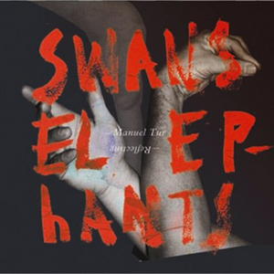 MANUEL TUR - Swans Reflecting Elephants