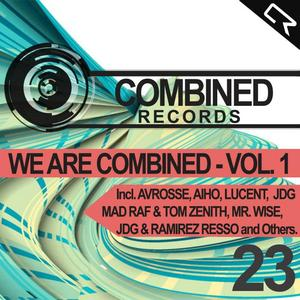 VARIOUS - We Are Combined