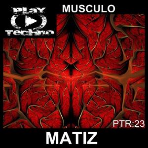 MATIZ - Musculo