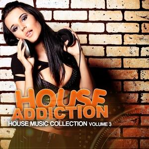 VARIOUS - House Addiction Vol 3