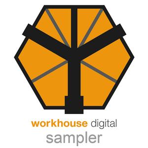VARIOUS - Workhouse Sampler