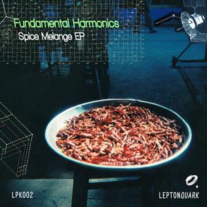 FUNDAMENTAL HARMONICS - Spice Melange