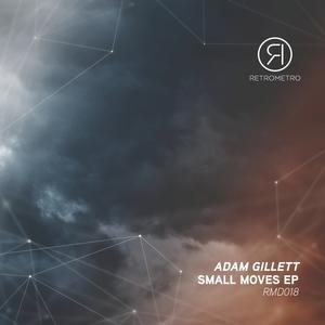ADAM GILLETT - Small Moves
