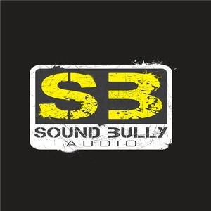 DUB PROFESSORS/SQUAD - Sound Get Bullied EP