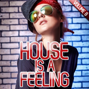 VARIOUS - House Is A Feeling Vol 8