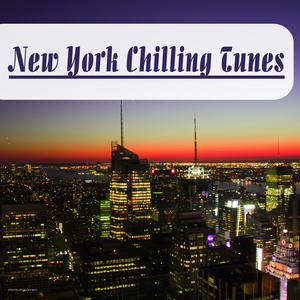 VARIOUS - New York Chilling Tunes