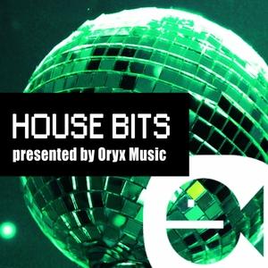 VARIOUS - House Bits Vol 4 1
