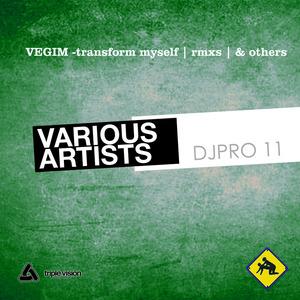 VARIOUS - Transform Myself Remixes & Other Tracks