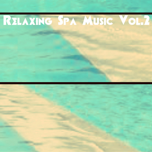 VARIOUS - Relaxing Spa Music Vol 2