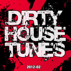 VARIOUS - Dirty House Tunes 2012-02