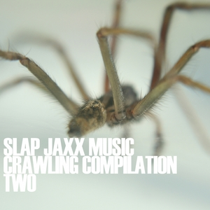 VARIOUS - Crawling Compilation Two