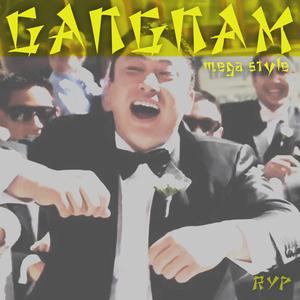 RYP - Gangnam Mega Style (The MashUp mixes)