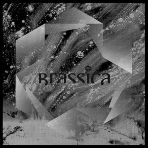 BRASSICA - Temple Fortune EP