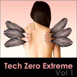 VARIOUS - Tech Zero Extreme Vol 1