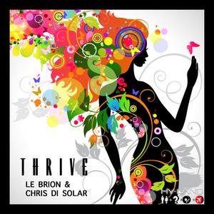 LE BRION/CHRIS DI SOLAR - Thrive