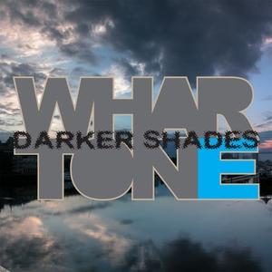 VARIOUS - Darker Shades Vol 1