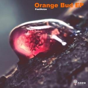 FEELNOIZE - Orange Bud EP