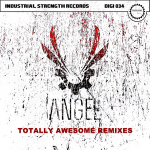 ANGEL - Totally Awesome Remixes