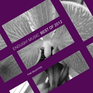 VARIOUS - Enough Music Best Of 2012: Fine Selection