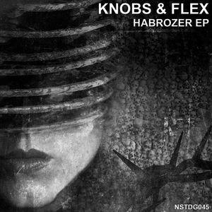KNOBS & FLEX - Habrozer EP