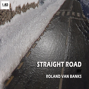 BANKS, Roland Van - Straight Road