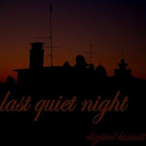 VARIOUS - Last Quiet Night
