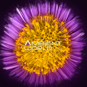 VARIOUS - Ambient World 2.0
