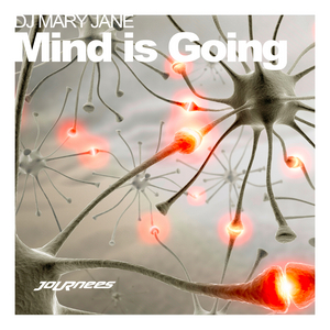DJ MARY JANE - Mind Is Going