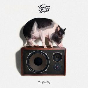 TOMMY TRASH - Truffle Pig