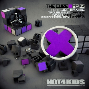 TROUBLEGUM/PZYON/ASIAN TRASH BOY feat JOT MAXI MC - The Cube EP