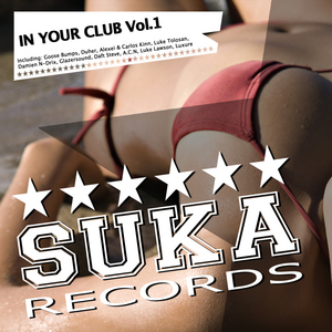 VARIOUS - In Your Club Vol 1