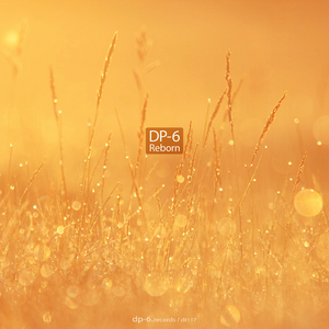 DP 6 - Reborn