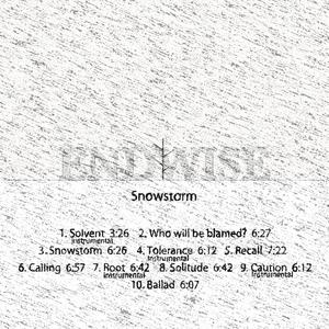 ENDWISE JP - Snowstorm