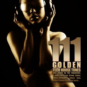 VARIOUS - 111 Golden Techhouse Tunes