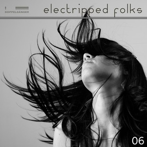 VARIOUS - Electripped Folks 06
