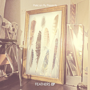 VARIOUS - Feathers