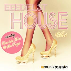 RENE de LA MONE/SLIN PROJECT/VARIOUS - Eeedelst House Vol 1 (unmixed tracks)