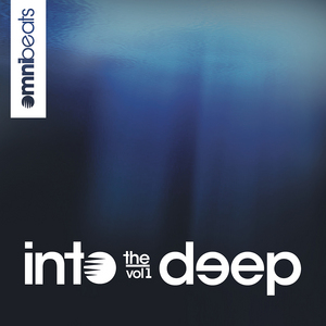 VARIOUS - Into The Deep Vol 1