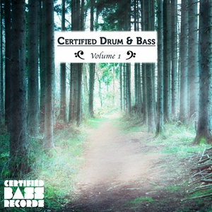 VARIOUS - Certified Drum & Bass: Volume 1