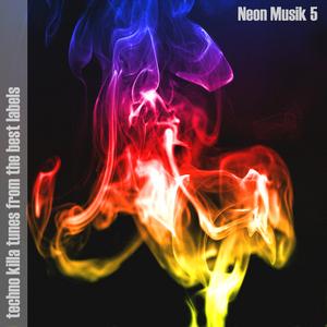 VARIOUS - Neon Musik 5