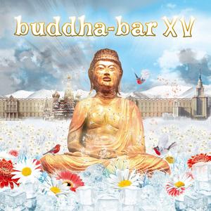 DJ RAVIN/VARIOUS - Buddha Bar XV