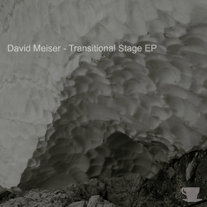 MEISER, David - Transitional Stage EP