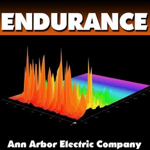 ANN ARBOR ELECTRIC COMPANY - Endurance