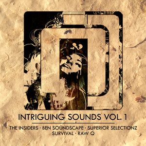 THE INSIDERS/BEN SOUNDSCAPE/SUPERIOR SELECTIONZ/SURVIVAL/RAW Q - Intriguing Sounds Vol 1