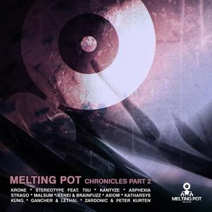 VARIOUS - The Melting Pot Chronicles Part II