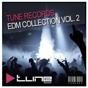 VARIOUS - Tune Records EDM Collection Vol 2