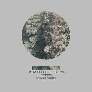 VARIOUS - From House To Techno