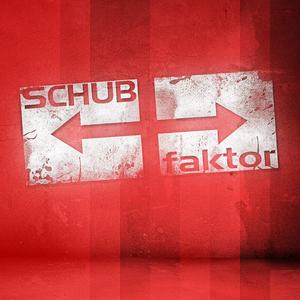 VARIOUS - Best Of Schubfaktor Music #7
