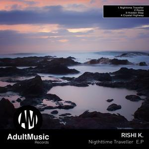 RISHI K - Nighttime Traveller